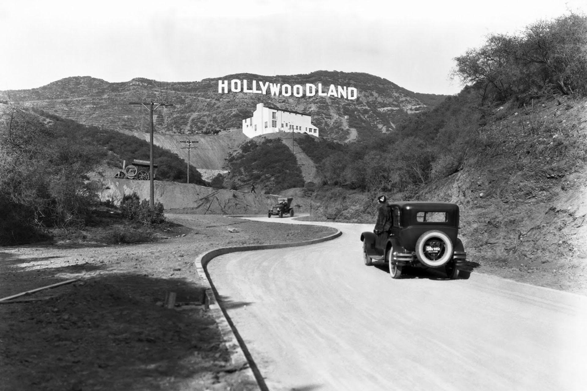 Hollywood Black Dalia